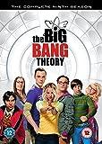 The Big Bang Theory - Season 9 [DVD] [2016]