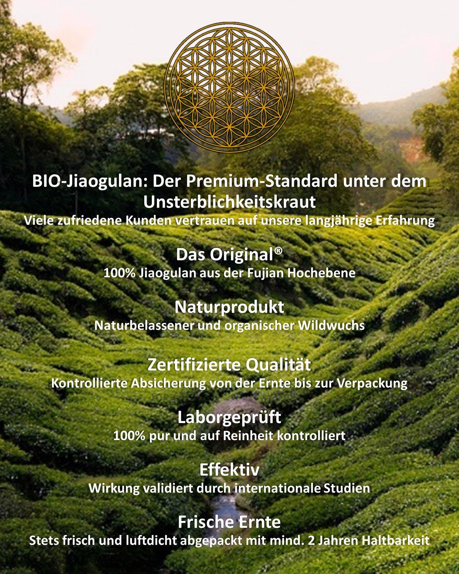 JIAOGULAN-Unsterblichkeitskraut-Natrliche-Wildsammlung-Ganze-Bltter-TOP-Qualitt-vom-Original-GMP-ISO-9001-zertifiziert-100-rein-frisch-laborgeprft-schonend-getrocknet-100g
