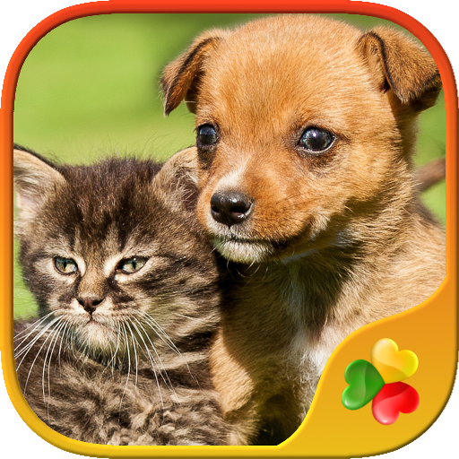cute-pets-real-dogs-and-cats-picture-puzzle-games-for-kids