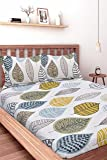 HUESLAND by Ahmedabad Cotton Comfort 144 TC Cotton Double Bedsheet with 2 Pillow Covers - Beige, Green & Blue