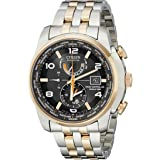 Citizen Eco-Drive World Time Atomic Radio Controlled Mens Watch Model AT9016-56H