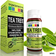 Organix Mantra Tea Tree Essential Oil For Skin, Hair, Face, Acne Care, 30Ml, Pure, Natural And Undiluted Therapeutic Grade Essential Oil