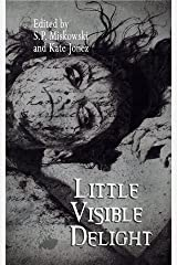 Little Visible Delight Kindle Edition