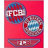 Bayern Aufnäher Stickbild Bügelbild Iron On Patch Sport Freizeit