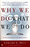 Why We Do What We Do: Understanding Self-Motivation