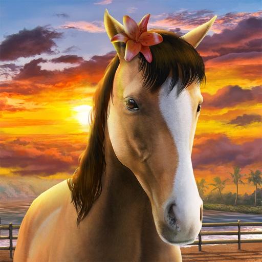 my horse de