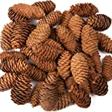 Baker Ross Piñas largas, Natural, 250 g