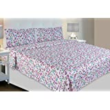 haus & kinder Red & White Collection, 100% Cotton Double Bedsheet with 2 Pillow Covers (Blue & Purple)