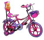 """NY Bikes Aqua 14"""" Kids Bicycle 3-5 years (Pink & Purple) Kids Bike"""