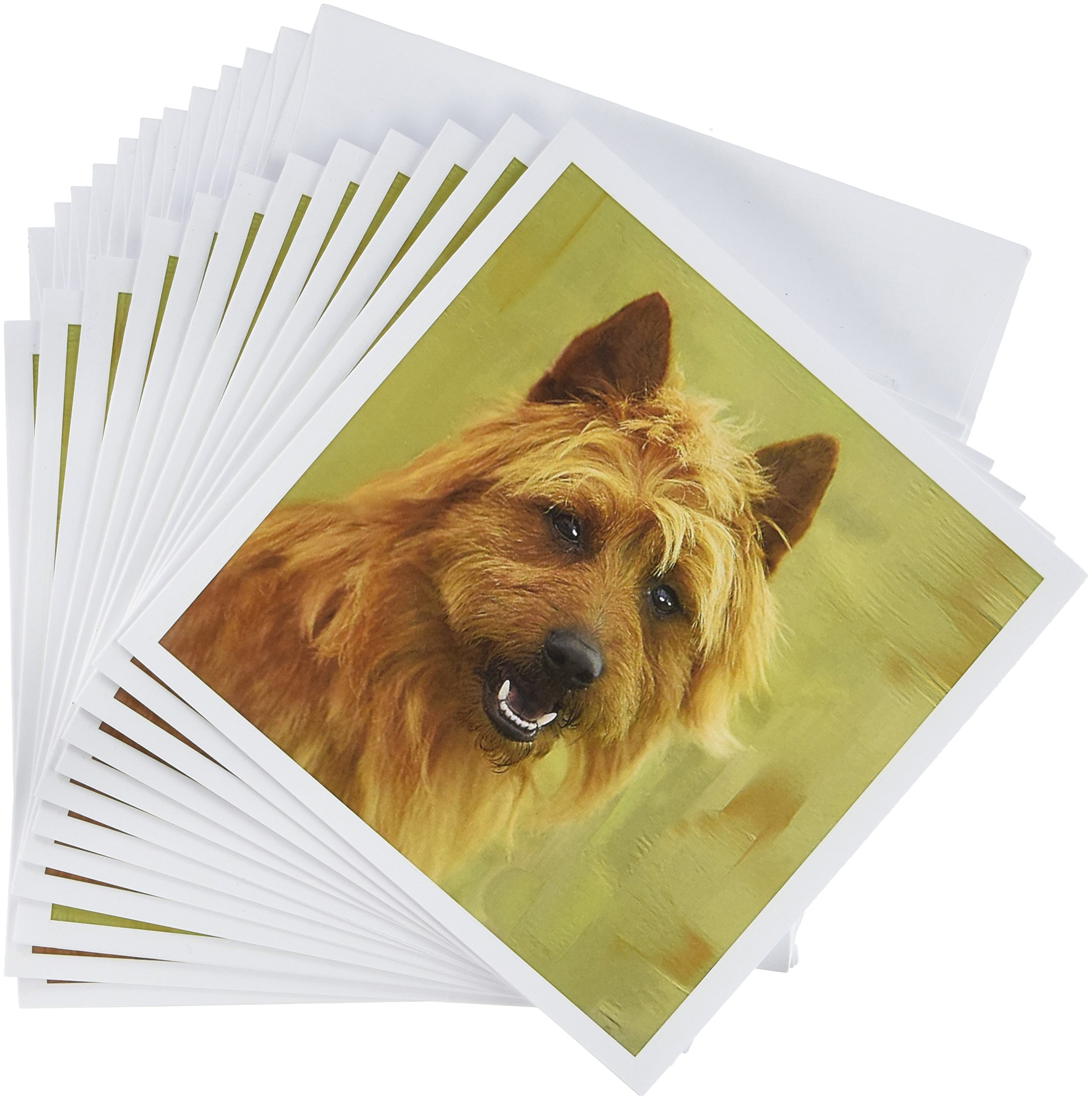 "3dRose gc_4260_2 6 x 6-Inch""Australian Terrier"" Greeting Card"