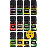 Parag fragrances Pure and Natural 12 in 1 Essential Oil Pack Lavender, Tea Tree, Eucalyptus, Peppermint, Rosemary, Lemongrass