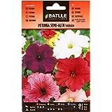 Semillas de Flores - Petunia Semi alta variada - Batlle