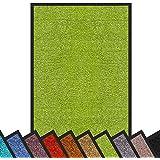Schmutzfangmatte Rhine | schadstoffgeprüft | waschbare & extra leistungsstarke Fußmatte | Sauberlaufmatte mit Rutschfester Rückseite | Türmatte in vielen Größen & Farben (40x60 cm, Grün)