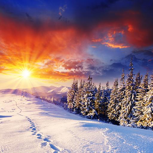 Winter Wonderland FREE HD