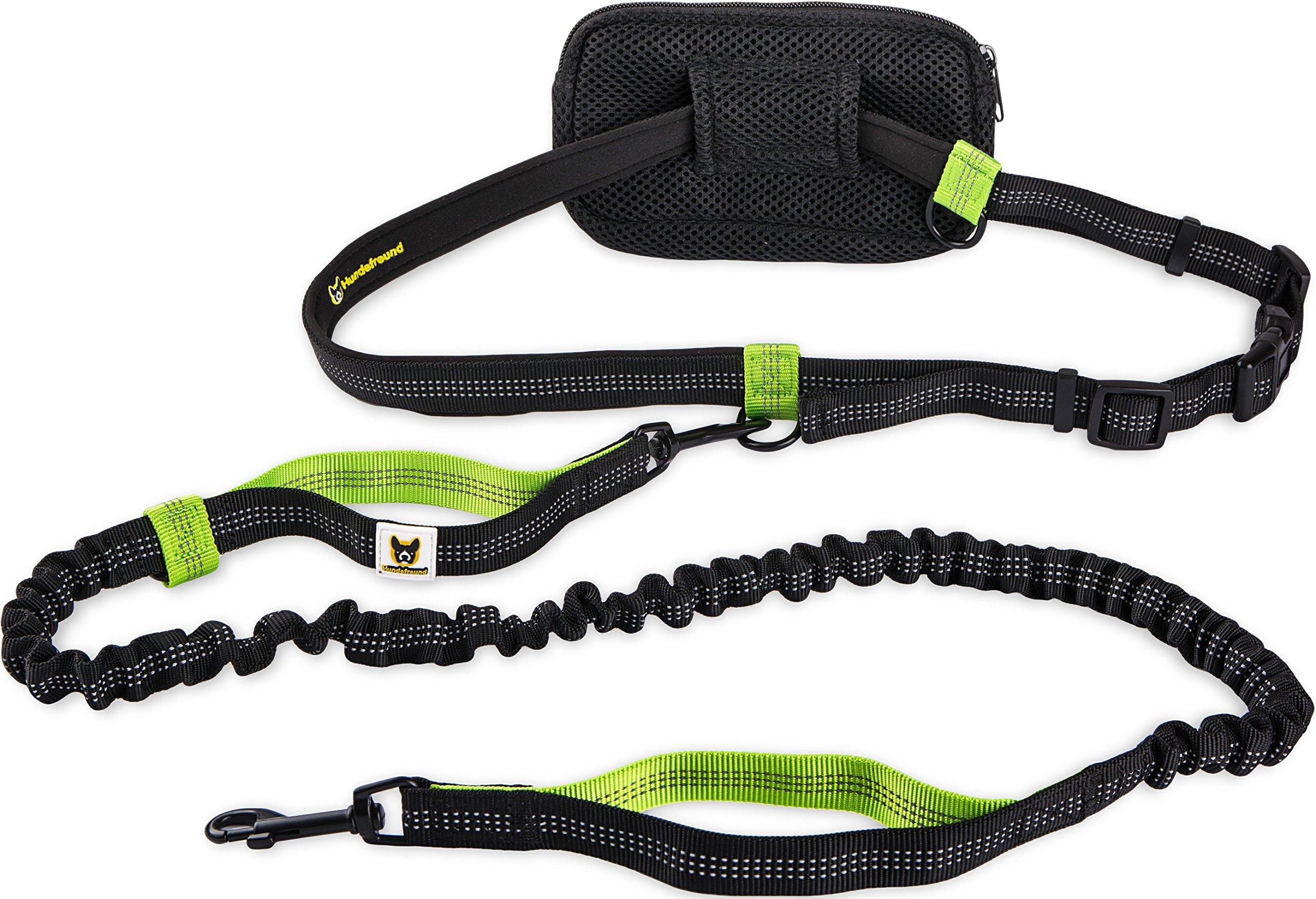 Correa manos libres para perros pequeños de hasta 15 kg | Hundefreund Correa elástica reflectante y extensible de 110 a 160 cm