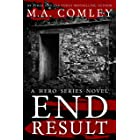 End Result (A Hero Series Book 2) (English Edition)