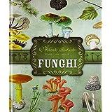 Atlante illustrato dei funghi