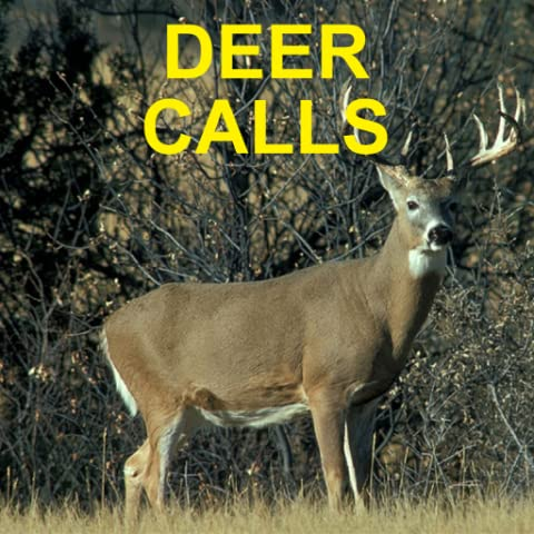 Deer Calls for Deer Hunting