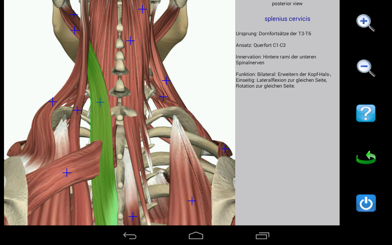 Visual Anatomy: Amazon.de: Apps für Android