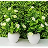 Tumphu Panda Set of 2 Mini Cute Artificial Plants Bonsai Potted Plastic Faux Flower Fake Topiaries Shrubs for Home Decor…