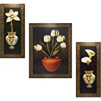 Indianara Set of 3 Floral Paintings (1687) Without Glass 5.2 X 12.5, 9.5 X 12.5, 5.2 X 12.5 INCH