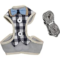 Emily Pets Harness with Leash for Small, Medium & Large Puppy (Small, Blue)