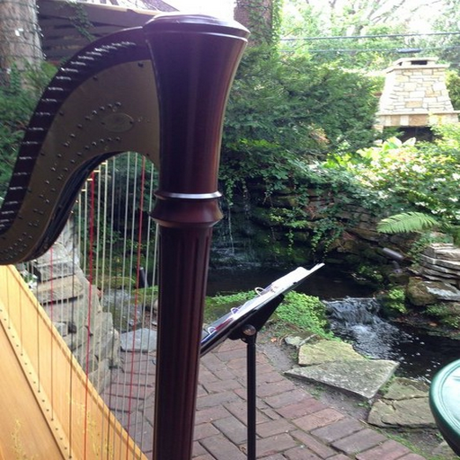 harp-by-denise