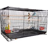 AVI CRAVE Bird cage Large 2.5 feet for Birds,Parrot,Finches,Love Birds, with 2 Perch Stick,Cuttlefish Bone Holder,with Cuttle