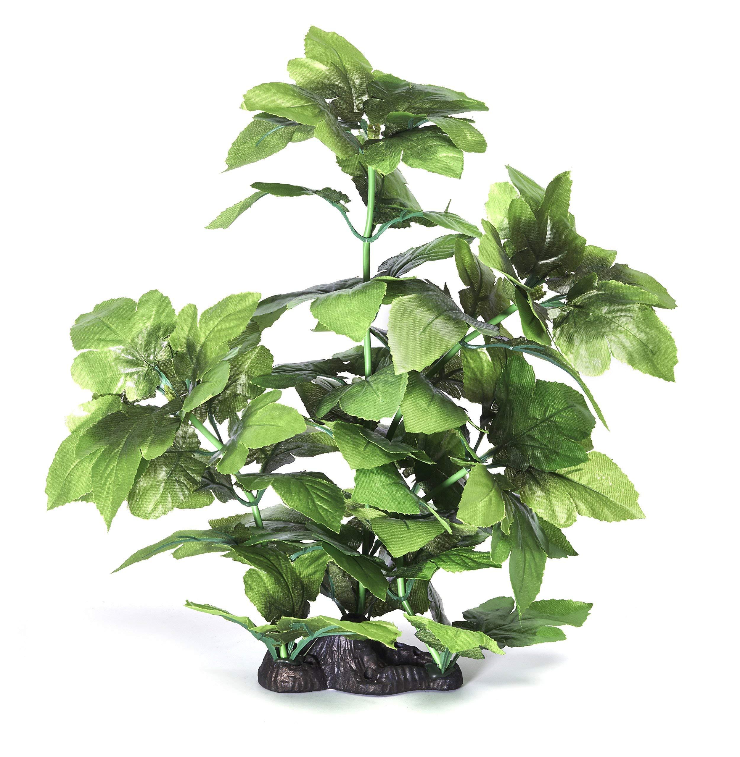 Pistachio Pet – Beautiful Aquarium Plant 16″/40cm With Base
