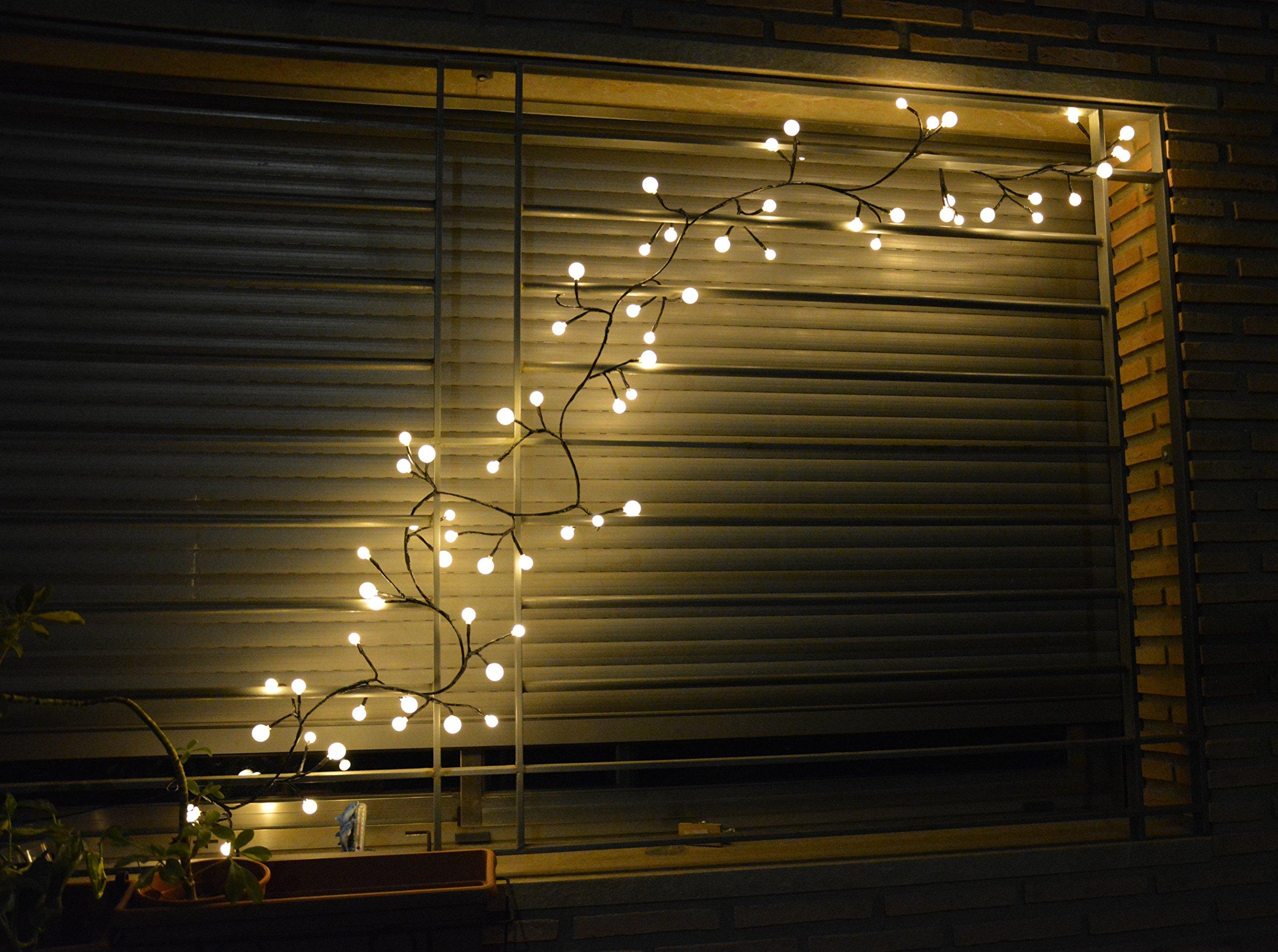 Catene luminose globo led striscia dimmerabile con lampadine chiare