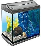 Tetra AquaArt Discovery Line LED Aquarium-Komplett-Set (inklusive LED-Beleuchtung, Tag- und Nachtlichtschaltung, Innenfilter und Futter), versch. Farben und Größen