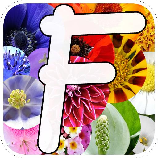 Jardinería Plantas con Flores