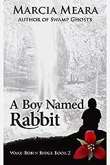 A Boy Named Rabbit: Wake-Robin Ridge Book 2 Kindle Edition