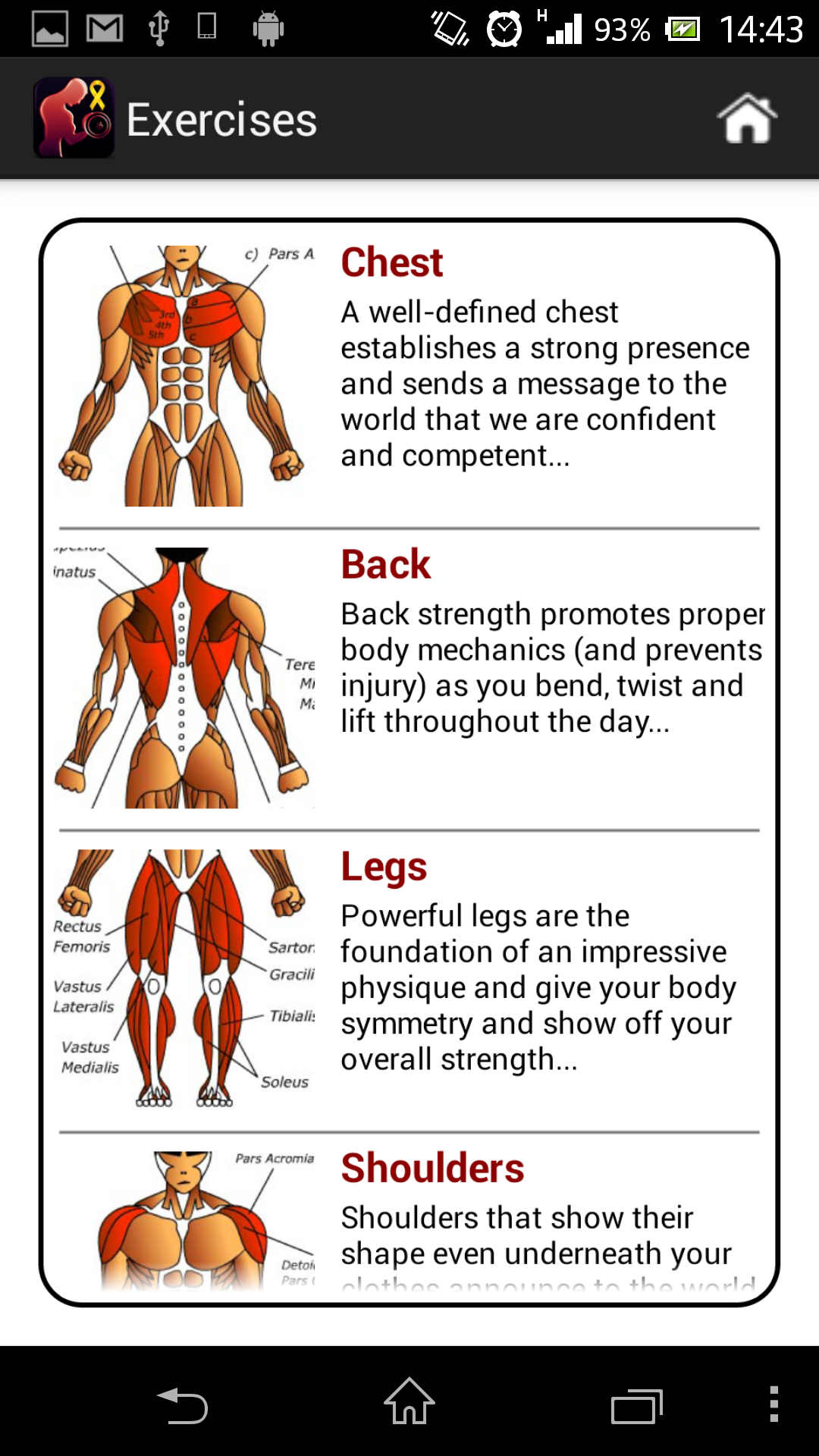 Dumbbells Muscle Workout Plan FREE: Amazon.co.uk: Appstore for Android
