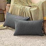 MIULEE Lot de 2 Housse de Coussin à Canapé Taie d'oreiller en Polyester Doux Décoratif pour Salon Chambre Sofa 30x50CM Gris f
