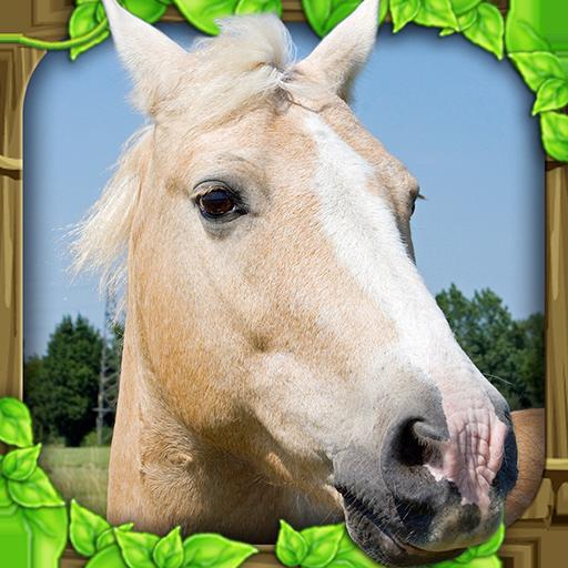 Wild Horse Mustang (Wild Horse Simulator)