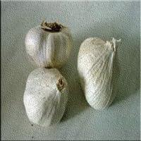 Garlic and Beauty