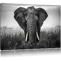 magnifique noir de l'éléphant / blanc Taille: 60x40 sur toile, énorme XXL Photos complètement encadrée avec civière, art…