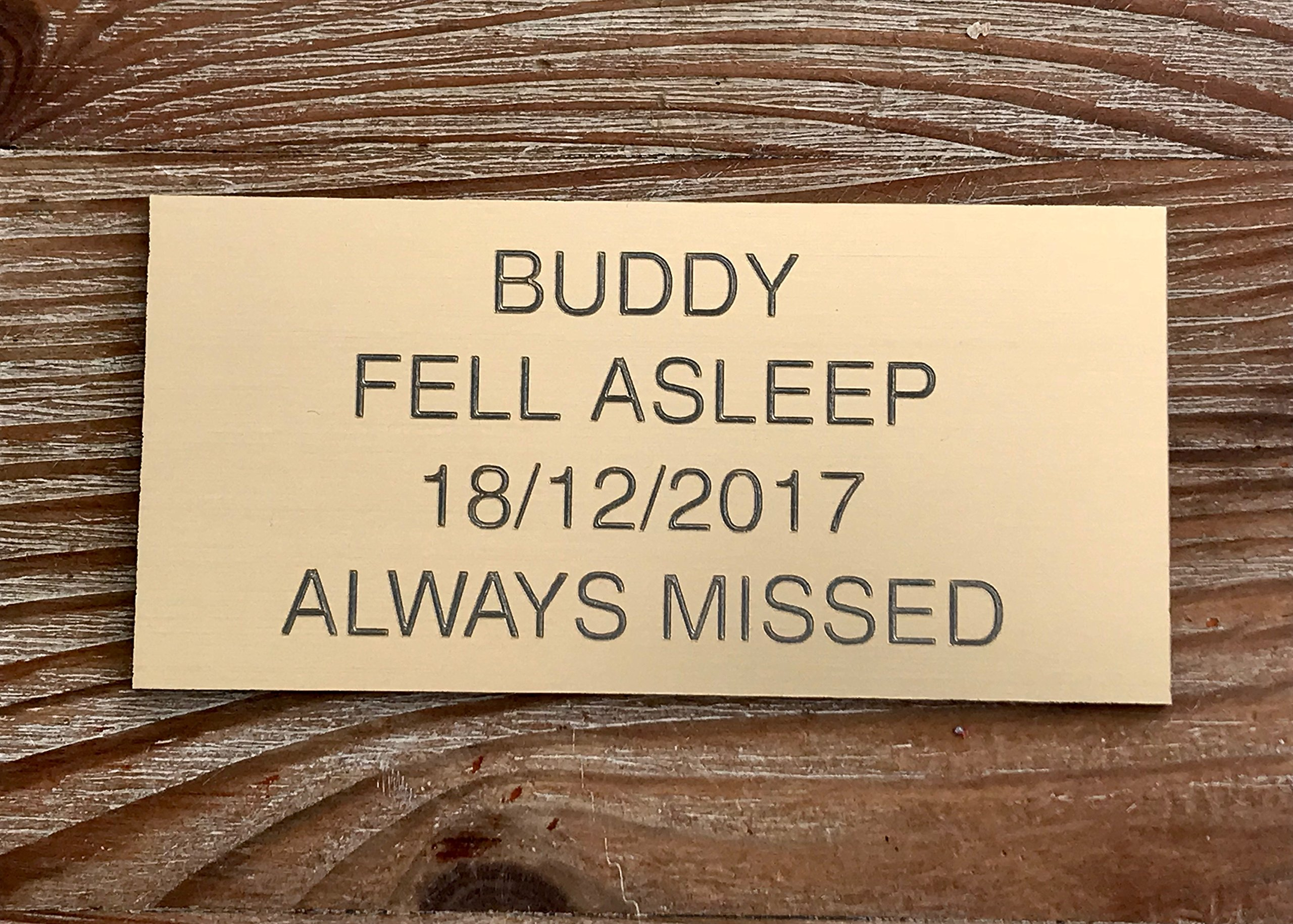 Pet Memorial Personalised Brass effect Plaque Engraved Dog Cat Grave small 7.5 x 3.5cm