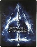 Les animaux fantastiques: Les crimes de Grindelwald [Blu-Ray]+[Blu-Ray 3D] [Region Free] (Audio français. Sous-titres…