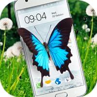 Papillon Sur l'Écran Blague