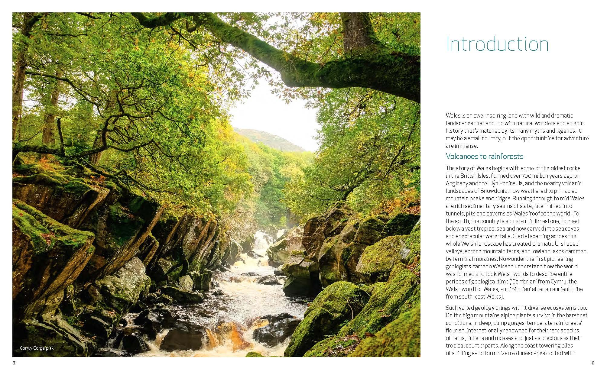 Wild Guide Wales and the Marches (Wild Guides) 9