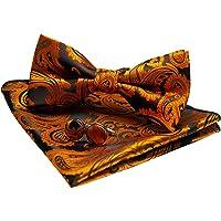JEMYGINS Papillon Uomo Paisley Design Regolabile in Diversi Colori con Fazzoletto e Gemelli
