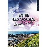 Entre les orages, le soleil brille : Une intrigue à l'image des côtes de Bretagne : escarpée, surprenante et romantique