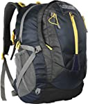 Lioncrown Polyester 60L Travel Trekking Rucksack/Hiking/Camping/Weekender Backpack (Navy Blue)
