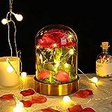 E-MANIS Kit de Rosas,La Bella y La Bestia Rosa Encantada,Elegante Cúpula de Cristal con Base cobre Luces LED,Beauty and Regal