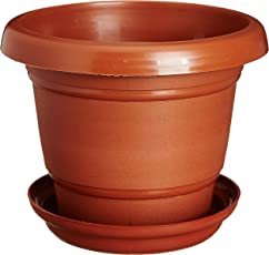 Easy Gardening Size 6 Gardening Pots + Trays - Terracotta Color Planter (Pack of Twelve)
