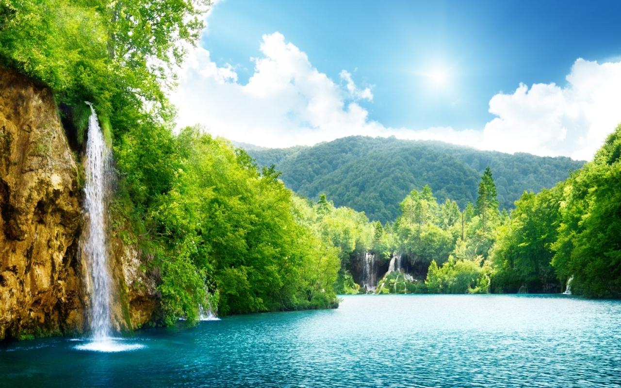 amazon nature wallpaper - photo #4