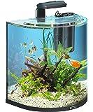 Tetra AquaArt Explorer Line Krebs Aquarium Komplett-Set