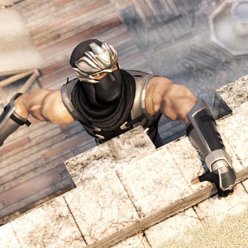 - Stealth Ninja